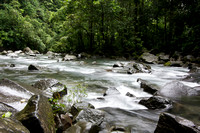 Costa Rica River - down stream from La Cataratas de Cortez